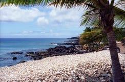Grande linea costiera dell'isola Immagine Stock