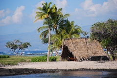Grande litorale dell'isola dell'Hawai Fotografie Stock Libere da Diritti