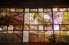 Grande luce solare colourful della finestra di vetro Fotografia Stock Libera da Diritti