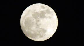 Grande luna Fotografia Stock Libera da Diritti