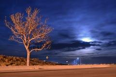 Grande lune par un arbre Image libre de droits