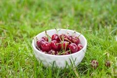 Grande maduro de la cereza en una placa en la hierba fotografía de archivo libre de regalías