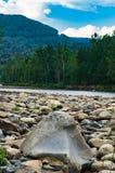 Grande masso su una sponda del fiume nella foresta con le montagne Immagine Stock Libera da Diritti