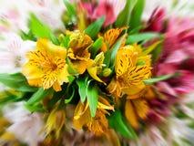 Grande mazzo dei fiori di alstroemeria Fotografie Stock Libere da Diritti