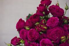 Grande mazzo di belle rose rosa scure Fotografia Stock Libera da Diritti
