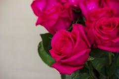 Grande mazzo di belle rose rosa scure su fondo grigio Fotografia Stock Libera da Diritti