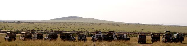 Grande migration Safari Trucks photographie stock