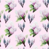 Grande modello della magnolia dei fiori su un fondo rosa Immagine Stock