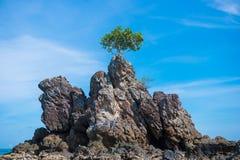 Grande montagne en pierre sur la plage contre le ciel bleu image stock