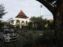 Grande moschea Immagini Stock