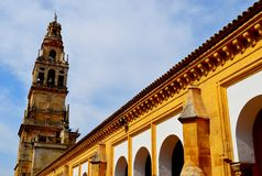 Grande mosquée de l'Espagne Cordoue en dehors de (8) Photos libres de droits