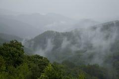 Grande Mtns fumoso nazionale. Sosta, TN-NC Fotografie Stock Libere da Diritti