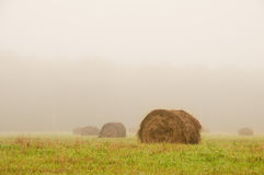 Grande mucchio di fieno su un campo nebbioso di mattina Immagine Stock