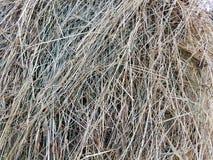 Grande mucchio di haye in autunno Fotografia Stock Libera da Diritti