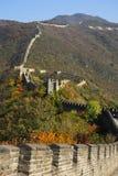Grande Muraglia in autunno La parete attraversa le cime delle colline coperte di foresta Fotografia Stock Libera da Diritti