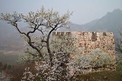 Grande Muraglia della fortezza di Huangya di Tianjin Immagini Stock Libere da Diritti