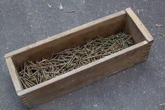 Grande número de parafusos na caixa de madeira Imagens de Stock Royalty Free