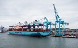Grande nave porta-container messa in bacino vicino alle gru fotografia stock