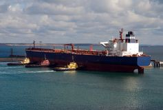 Grande navio de carga e três towboats em um porto Fotos de Stock