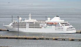 Grande navio de cruzeiros Fotos de Stock Royalty Free