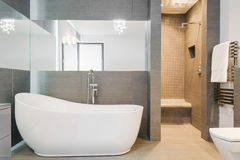 Grande nouvelle baignoire de conception Photo libre de droits