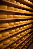 Grande numero di invecchiare delle formaggio-ruote Immagine Stock