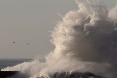 Grande onda fotografie stock
