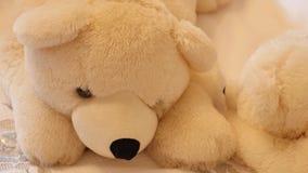 Grande orso di orsacchiotto bianco video d archivio