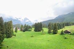 Grande paesaggio della montagna di Titlis, Svizzera Fotografia Stock Libera da Diritti