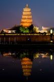 Grande pagoda dell'oca di Wilde al ritratto di notte Fotografie Stock