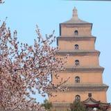 Grande pagoda dell'oca selvatica Fotografia Stock