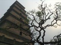Grande pagoda sauvage d'oie images libres de droits