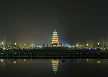 Grande pagoda sauvage d'oie Image libre de droits