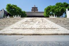 Grande pagoda sauvage d'oie Image stock