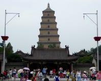 Grande pagoda sauvage d'oie photographie stock
