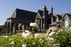Grande palazzo del victorian nel pelo Immagine Stock Libera da Diritti