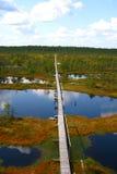 Grande palude in Estonia fotografie stock libere da diritti