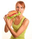 Grande panino Fotografie Stock