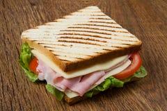 Grande panino Fotografie Stock Libere da Diritti