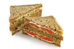 Grande panino con un salmone Fotografie Stock