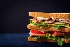 Grande panino di club con il prosciutto, il bacon, il pomodoro, il cetriolo, il formaggio, le uova e le erbe immagini stock