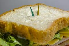 Grande panino - hamburger dell'hamburger con manzo, i sottaceti, il pomodoro e la r Fotografia Stock Libera da Diritti