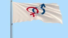 Grande panno bianco con i simboli dell'uomo e della donna su un'asta della bandiera che fluttua nel vento su un fondo trasparente stock footage
