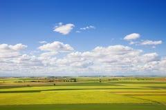 Grande panorâmico de campos de Castilla na mola Foto de Stock