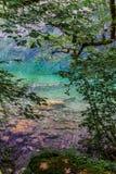 Grande panorama di estate del lago Obersee Scena verde delle alpi svizzere, posizione del villaggio di Nafels, Svizzera, Europa d Fotografie Stock Libere da Diritti