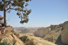 Grande parco del dinosauro, dove tracce di questi rettili antichi fotografia stock libera da diritti