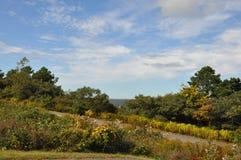 Grande parco di stato di Pocono in Pensilvania Immagine Stock Libera da Diritti