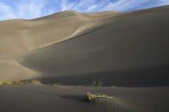 Grande parco nazionale delle dune di sabbia in Colorado del sud Fotografie Stock