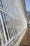 Grande parete di vetro della serra storica Fotografie Stock Libere da Diritti