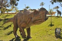 Grande parque do dinossauro, onde traços destes répteis antigos Foto de Stock Royalty Free